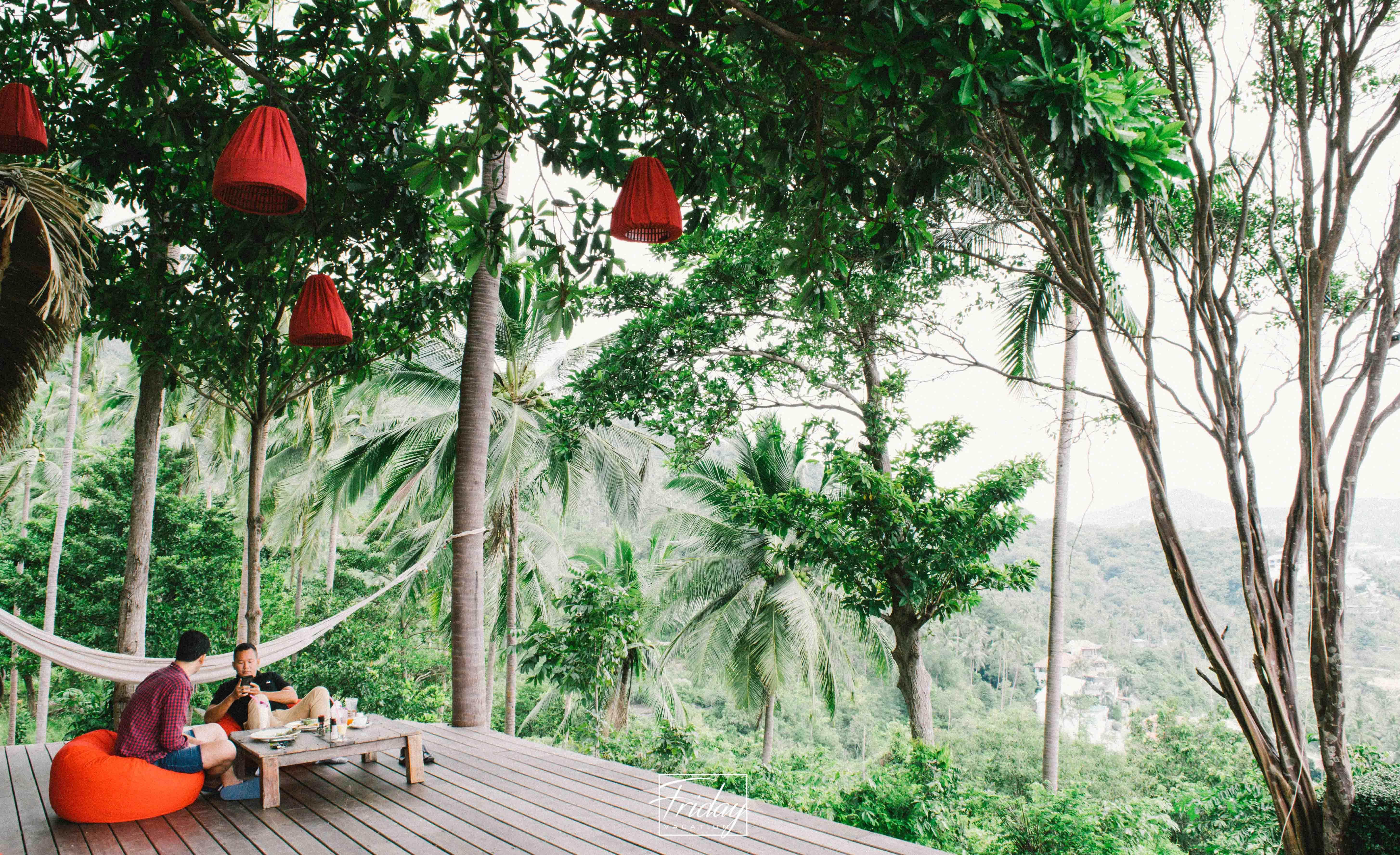 The Jungle club Koh Samui จ่าย หลักร้อย enjoy หลักล้าน  นครศรีดีย์